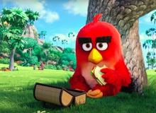 The Angry Birds Movie - Chết cười với những chú chim điên nổi tiếng