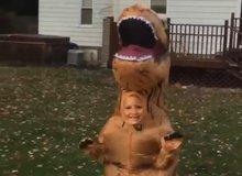 Chú khủng long 'ăn thịt' kute lạc lối khiến người xem phải bật cười