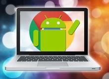 Google vừa làm 1 điều khiến tất cả các app giả lập Android trên máy tính tiêu đời