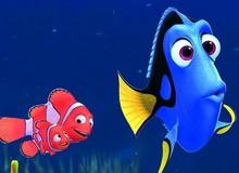 Phim hoạt hình Finding Dory đứng đầu bảng xếp hạng phim ăn khách, thu về hơn 2700 tỷ đồng