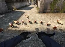 Con gà trong Counter-Strike giờ đã có thể lẽo đẽo theo người chơi