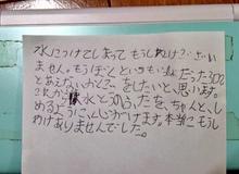 Cậu bé 8 tuổi xin lỗi Nintendo vì làm đổ nước lên... máy 3DS