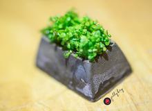 Keycap trồng cây của người Việt được nước ngoài tung hô, còn Việt Nam thì dìm