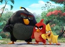 Phim hoạt hình về Angry Birds tiết lộ trailer mới cực thú vị