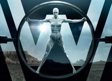 Top 20 phim truyền hình mới xuất sắc nhất theo đánh giá chuyên môn