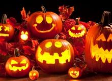 'Hỏi ngu': Tại sao bí ngô lại trở thành biểu tượng của ngày Halloween?