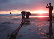 Tuyến cáp AAG lại bị đứt do bão số 2 gây ảnh hưởng đến truy cập Internet ở Việt Nam