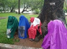 """Bức ảnh ở Hồ Gươm trong ngày mưa bão khiến bạn phải """"rùng mình"""""""