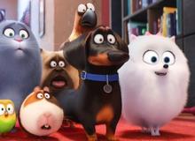 """Sự thật ít người dám nói về phim hoạt hình 3D """"The Secret Life of Pets"""""""
