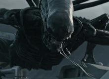 """14 hiện thân ghê rợn của """"Alien"""" ghê rợn đã xuất hiện trong thương hiệu phim"""