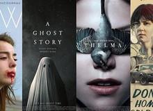 13 tác phẩm điện ảnh độc và lạ của năm 2017 mà không ai hay biết!