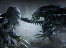 Alien và Predator: Số phận mù mịt của hai kẻ săn mồi trong tay chuột nhắt