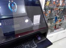 Quảng cáo laptop giá hàng chục triệu bằng game crack, 1 cửa hàng trở thành tâm điểm bàn tán của game thủ thế giới