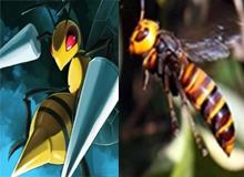 """Hóa ra Pokemon thực sự tồn tại ngoài đời, thậm chí còn có thể """"bắt"""" được (Phần 1)"""