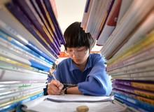 Không lớp học, không bài tập về nhà - học sinh được tự do chơi đùa trong ngôi trường mơ ước tại New Zealand