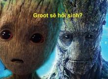"""Giả thuyết Avengers 4: Groot đáng yêu sẽ """"hồi sinh"""" từ rìu thần Stormbreaker của Thor?"""