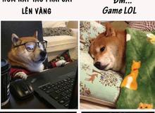 Những dấu hiệu cực dị cho thấy bạn đang chơi game quá nhiều