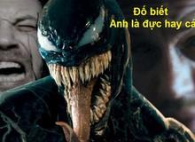 Khám phá bí ẩn về giới tính của Symbiotes: Venom là giống đực hay cái?