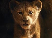Phấn khích với Trailer mới nhất của Lion King nhưng đây mới là điều khiến nhiều người tranh cãi về Vua Sư Tử