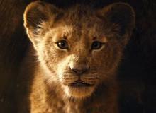 """6 câu hỏi mà fan không thể không thắc mắc ở """"The Lion King"""" bản remake"""