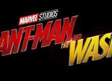 Đừng vội mừng, Ant-Man And The Wasp không phải là phim siêu anh hùng hài kịch lãng mạn như bạn tưởng đâu