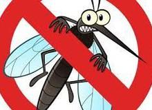 Mùa nồm đến, chủ quán net tá hoả tìm cách chống muỗi cho game thủ