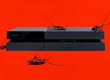 Vì sao lũ gián lại thích làm tổ trong máy PS4 đến thế?