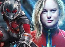 """""""Ant-Man and the Wasp"""" và """"Captain Marvel"""" bị nghi lộ kịch bản trên Reddit?"""