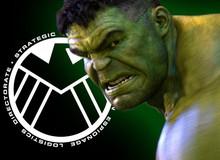 Giả thuyết: Hulk sẽ trở thành đặc vụ của S.H.I.E.L.D. trong Avengers 4?