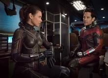 """Ant-Man and The Wasp: Bộ đôi Ong-Kiến và 5 cặp đôi """"ăn ý"""" nhất vũ trụ Marvel"""