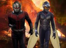 Avenger 4: Làm thế nào để Ant-Man thoát ra khỏi Lượng tử giới?