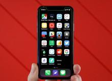 iPhone X và iPhone SE có thể sẽ bị khai tử ngay trong năm nay