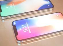 Cùng ngắm nhìn mô hình in 3D của iPhone 9 và iPhone Xs Plus sánh vai bên nhau