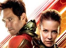 Phản ứng của cộng đồng mạng sau suất chiếu sớm Ant-Man and The Wasp: Tràn ngập tràn lời khen