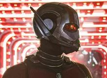 Giải mã After Credit của Ant-Man and The Wasp: Sự kết nối với Cuộc chiến vô cực và Avengers 4