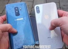 Tra tấn Galaxy S9 Plus và iPhone X: Ngâm nước Coca-Cola, đóng băng trong 24 giờ và cái kết bất ngờ