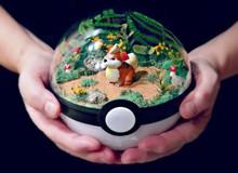 Những khu vườn Pokeball trong lòng bàn tay khiến fan ruột Pokemon thích mê từ cái nhìn đầu tiên