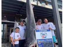Cậu bé 8 tuổi bất ngờ câu được cá mập hổ nặng 314 kg, dự đoán phá cả kỷ lục thế giới cách đây 22 năm