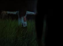 Giải thích chi tiết Bắc Kim Thang: Bộ phim với cú lừa gây choáng váng