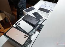 Giá iPhone 11, iPhone 11 Pro tại Việt Nam giảm sốc 5 triệu đồng