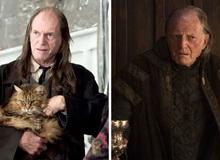 14 diễn viên đã tham gia diễn xuất trong cả 2 series đình đám Harry Potter và Game Of Thrones