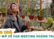 Hảo Thỏ trải lòng về con đường trở thành Top Tik Tok Việt Nam và úp mở về fan meeting hoành tráng