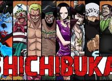 One Piece: Gây ra đảo chính và những tội lỗi mà các Thất vũ hải đã gây ra