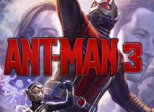 """Sau bao ngày bị """"hắt hủi"""", Ant-Man 3 đã được lên kế hoạch xuất hiện vào năm 2020 trong MCU"""
