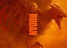 Liệu Titanus Rodan có còn đất diễn trong Godzilla Vs. Kong?