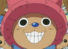 One Piece: Top 10 nhân vật mạnh mẽ có thể sẽ được buff thêm Haki trong tương lai (P2)