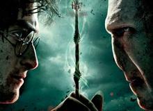 Tám loại lõi đũa phép đỉnh nhất Harry Potter: Nguyên liệu cuối cùng sẽ khiến bạn bất ngờ đấy