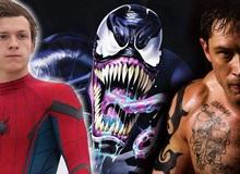 Spider Man có thể sẽ xuất hiện trong phần tiếp theo của Venom do Sony sản xuất?