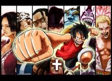 One Piece: Thất Vũ Hải ngày ấy và bây giờ - Cứ tưởng mạnh lắm ai ngờ cũng thường thôi?