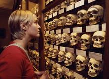 10 viện bảo tàng kỳ dị trên thế giới, tất cả chúng đều sẽ làm bạn ngỡ ngàng